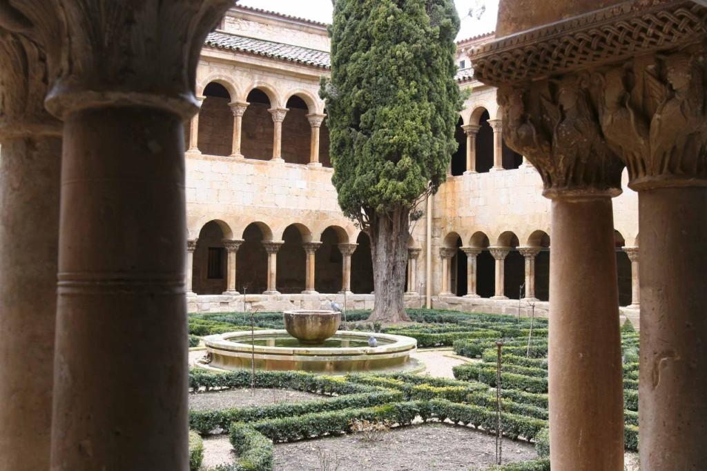 El gran ciprés de Silos al que muchos poetas han dedicado sus versos. Monasterio de Santo Domingo de Silos 13