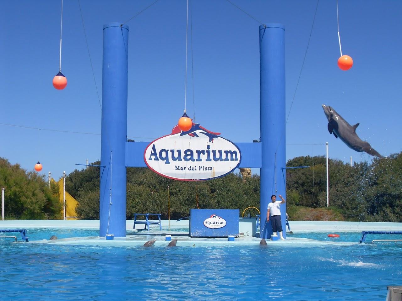 Mar del plata megaconstrucciones extreme engineering Aquarium familia numerosa